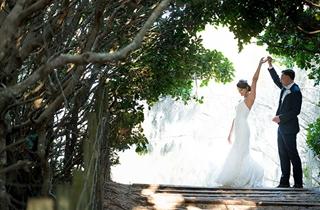 Wedding Venue - Novotel Twin Waters Resort 13 on Veilability