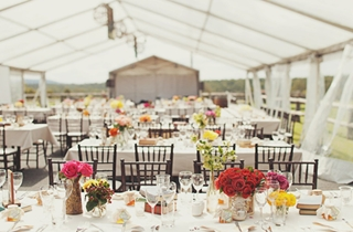 Wedding Venue - Spicers Hidden Vale - Luxury Outdoor Marquee 4 on Veilability