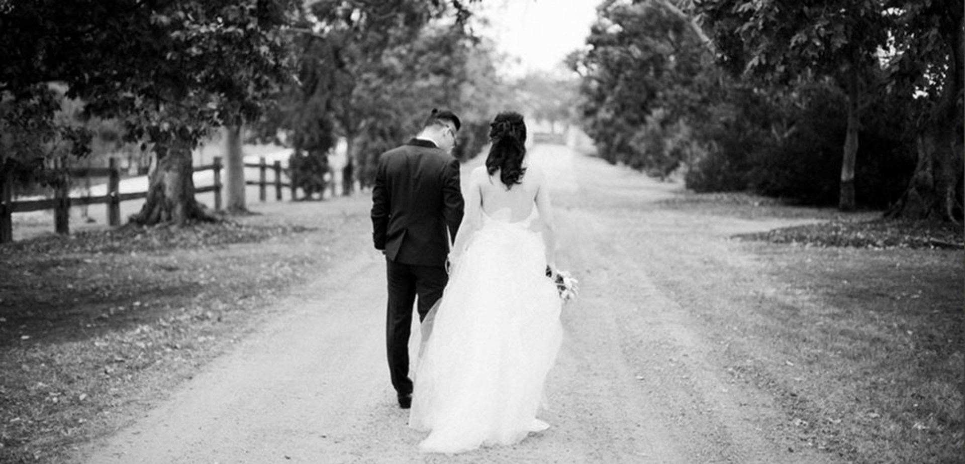 Wedding Venue - Spicers Hidden Vale 4 on Veilability
