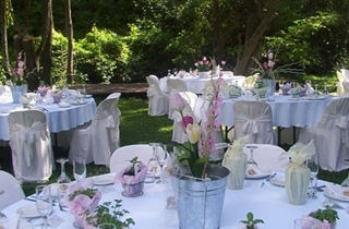 Wedding Venue - Bundaleer Rainforest Gardens - Alfresco Gardens 5 on Veilability