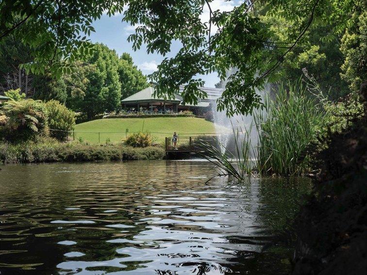 Wedding Venue - Cedar Creek Estate Vineyard & Winery - The Gazebo 1 on Veilability
