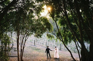 Wedding Venue - Mercure Clear Mountain Lodge, Spa & Vineyard 3 on Veilability