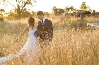 Wedding Venue - The Woolshed at Jondaryan 3 on Veilability