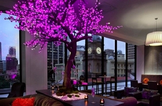 Wedding Venue - Sofitel Brisbane Central 1 on Veilability