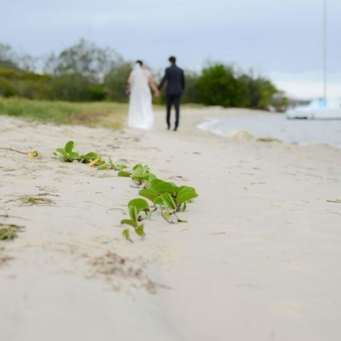 Wedding Venue - Caloundra Power Boat Club 32 on Veilability