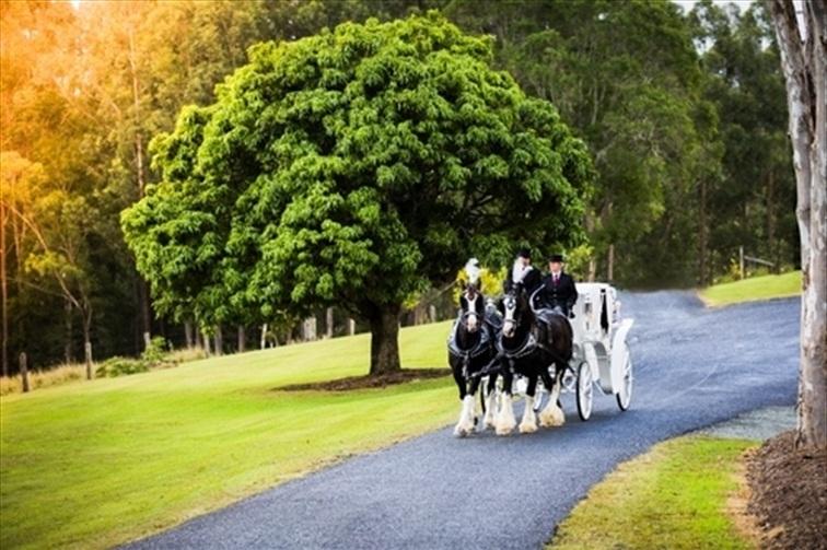 Wedding Venue - Oceanview Estates Winery & Restaurant 27 on Veilability
