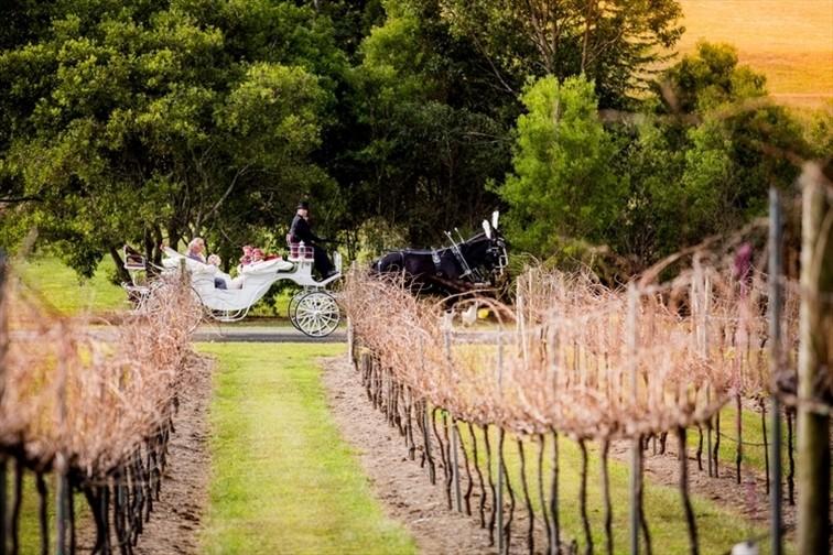 Wedding Venue - Oceanview Estates Winery & Restaurant 21 on Veilability