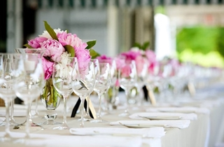 Wedding Venue - Sanctuary Cove Country Club - The Botanical Room 3 on Veilability