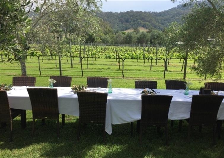 Wedding Venue - Sarabah Estate Vineyard 19 on Veilability