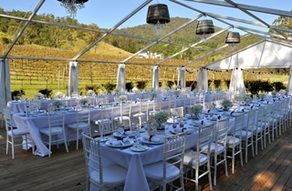 Wedding Venue - Sarabah Estate Vineyard - Marquee 3 on Veilability