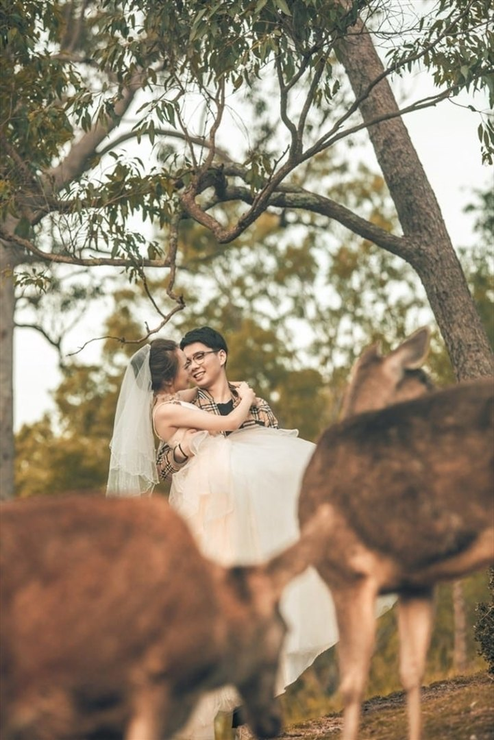 Wedding Venue - Lyell Deer Sanctuary 12 on Veilability