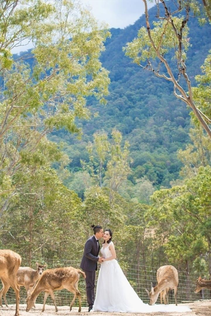 Wedding Venue - Lyell Deer Sanctuary 6 on Veilability