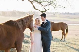Wedding Venue - Clandulla Weddings 6 on Veilability