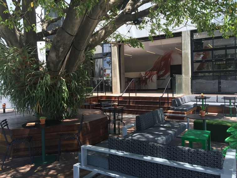 Wedding Venue - Rydges Fortitude Valley - The Paddock Bar 7 on Veilability