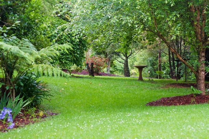 Wedding Venue - Mt Glorious Rainforest Lodge 4 on Veilability
