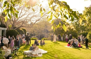 Wedding Venue - Spicers Clovelly Estate 2 on Veilability