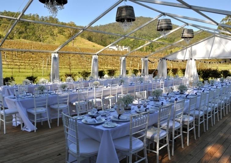 Wedding Venue - Sarabah Estate Vineyard 6 on Veilability